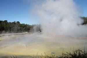 Steaming Pools Wai-O-Tapu